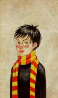 Young Harry Potter by Segundus