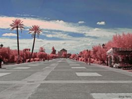 Marrakech by agelisgeo