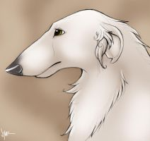 Better Borzoi by Nyaasu