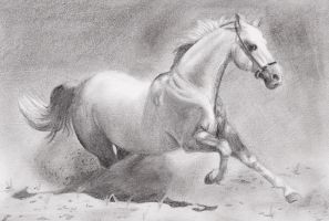 running horse sketch by russiawantsvodka