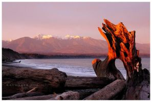 Dungeness Spit Fire by Raymaker