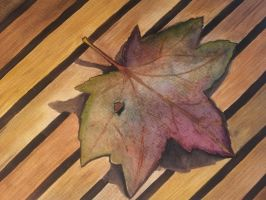 A leaf on a bench by Nadab