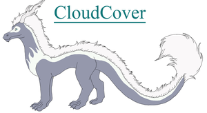 CloudCover Ref by KamiraWolfDemon