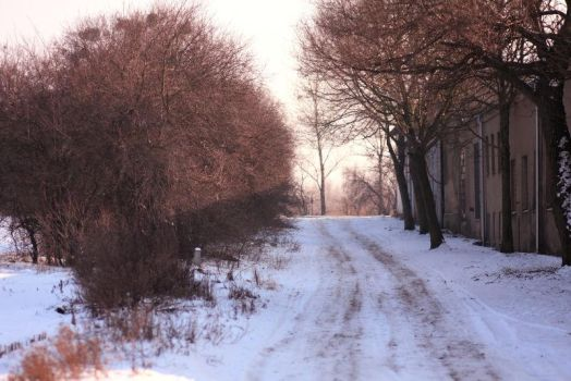 Winter 2012 - 30 by Eufrosis
