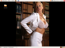 jenna jameson ubuntu screen by bigrobb