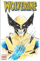 Wolverine 1 variant by MikimusPrime