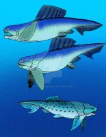Dinichthys and Protitanichthys by avancna