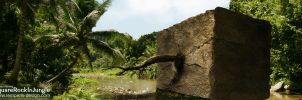 Square Rock In Jungle by slempens