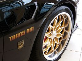 2010 Trans Am_IV by DetroitDemigod