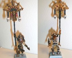 TK Battle Standard Bearer by veritas117