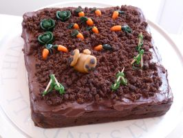 Allotment Chocolate Cake by Rebeckington