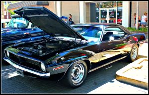 Back N' Black Cuda by StallionDesigns