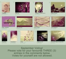 Challenge 23 voting by bechahns