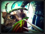 Jungle Cat by Isika