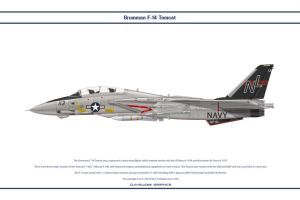 F-14A VF-51 1 by WS-Clave