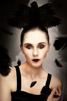 Black Swan by Zeete