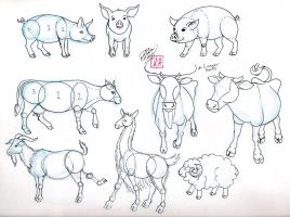 Draw Pig Cow Goat and Sheep by Diana-Huang