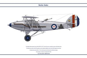 Audax GB 2 Sqn by WS-Clave