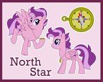 North Star ref (G1 to G4) by Bakufoon