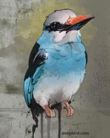 kingfisher. by poopbird