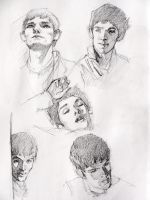 Merlin studies by HgwrtsExchngeStdnt