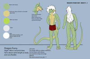 Dragon Furry Ref. sheet v.1 by Dragon-Furry