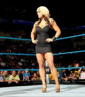 Wwe Superstar Kaitlyn Hot Black Dress by camuskilller1904