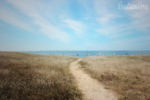 Way to the sea by BambisLogic
