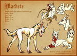 Machete ref. sheet by CanisAlbus
