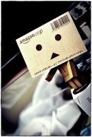 bobble head danbo by pocituink