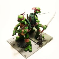 TMNT Display - NECA 2 by Lalam24