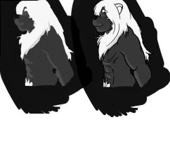 black and white lion by Galvin-wolf