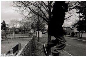 Fence Jump by CasePhoto