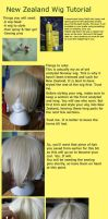 APH: New Zealand curl tutorial [Reupload] by elliluna