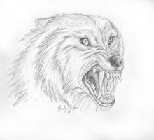 snarling werewolf by Raksha-the-Demon