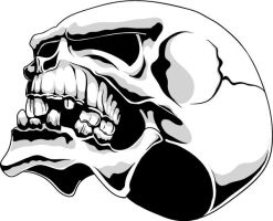 skull in black and white by T3hSpoon