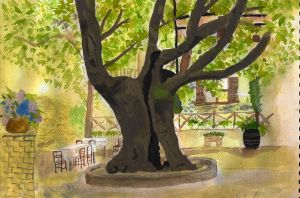 Plane Tree by Chequer