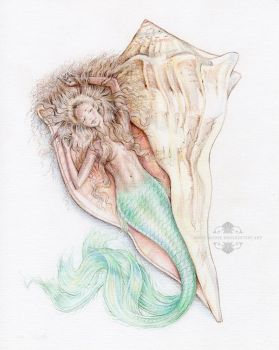 Lightning Whelk Shell Mermaid by Mocten