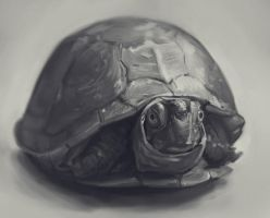 animal april challenge - study 12 by teyoliia