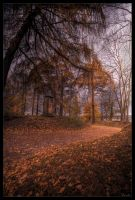 Autumn way by zardo