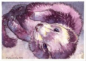 Slinky ACEO by Nivailis