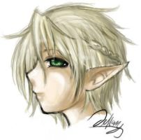 Elf Head by sukini