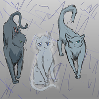 Request~ Bluestar's Kits by Whitefire8