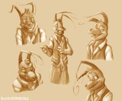 Fiddling with Expressions by buizelmaniac