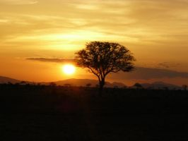 african sunset by JJinwonderlandx