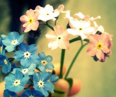 flowers , forever by middie4life0637