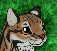 Ocelot Blinking by Flame-Shadow