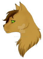 felidae - headsheet#1 by Rjnox