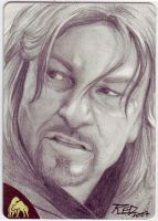 LOTR Boromir by britbrakdown