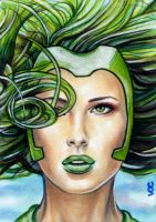 Polaris Sketch Card 3 by veripwolf